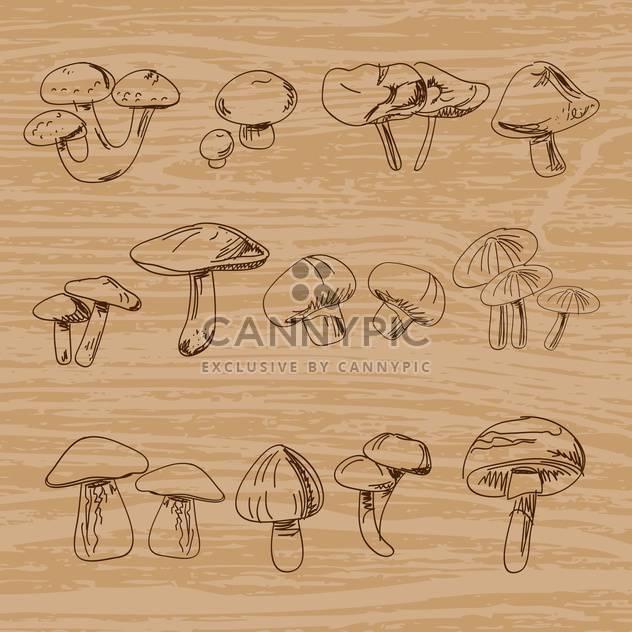 Set of hand-drawn vintage mushrooms - Free vector #131262
