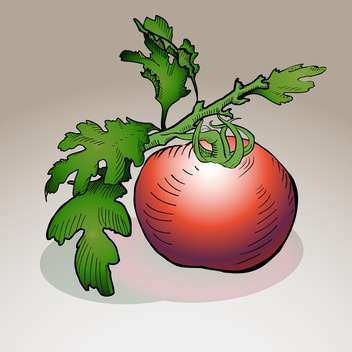vector illustration of red ripe tomato on grey background - бесплатный vector #126872