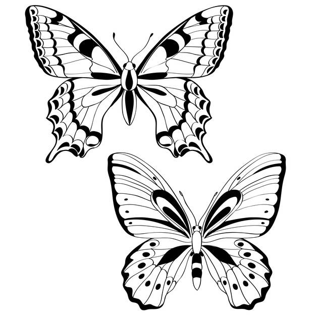 Vector illustration of black butterflies on white background - Kostenloses vector #127242