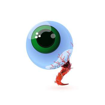 vector illustration of big human eye on white background - vector #127732 gratis