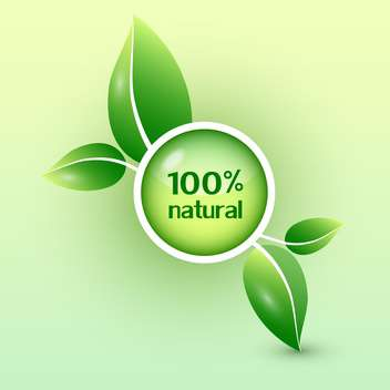 green round shaped eco icon with green leaves - vector gratuit #127822